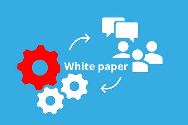 Whitepaper 1